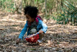 Adorable African Playing Outdoors. Preschool Kids playing with Autumn Leaves. American mixed race kid Girl playing with Net in Jungle. Little kids Explorer Hiking in Forest.