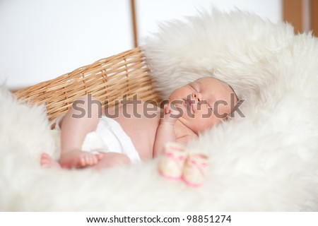 adorable baby are sleeping in a wicker basket