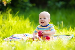 Adorable baby boy eating apple playing on colorful blanket in green grass. Child having fun on family picnic in summer garden. Kids eat fruit. Healthy nutrition for little child. Kid with apples