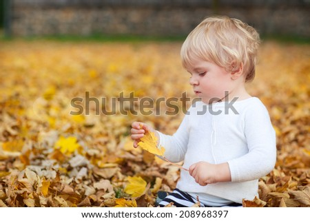 Adorable baby boy playing with yellow leaves in autumn park on sunny day