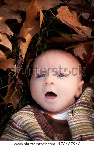 Adorable baby newborn boy surrounded by fall leaves with mouth open