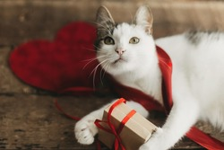 Adorable cat playing with red ribbon and gift box on rustic wooden background with velvet hearts. Happy Valentines day. Animals love concept. Cute funny kitty in red ribbons