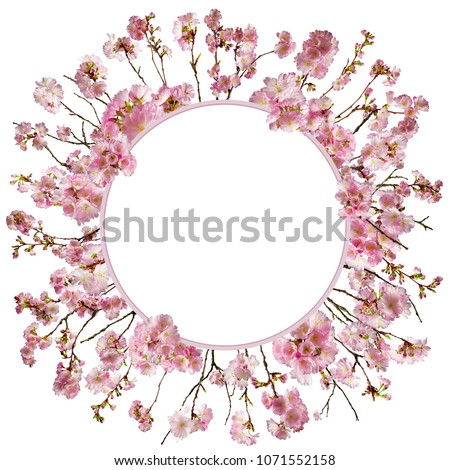 adorable cherry blossom background with little branches and leaves, free space for your text