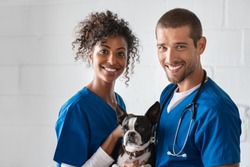 Adorable cute dog sitting at vet hospital with doctors looking at camera. Cheerful vet and african nurse holding boston terrier in clinic. Portrait of happy veteranian man and woman with pet.
