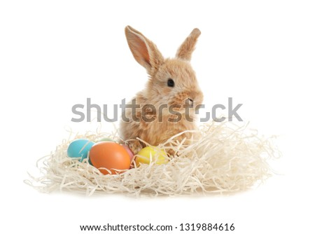 Adorable furry Easter bunny with decorative straw and dyed eggs on white background #1319884616