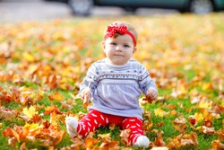 Adorable little baby girl in autumn park on sunny warm october day with oak and maple leaf. Fall foliage. Family outdoor fun in fall. child smiling.