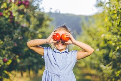 Adorable little female picked two fresh ripe apples from apple tree and holds them infront of her eyes, grinning to the camera.