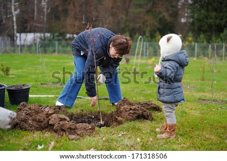 Adorable little girl and her grandmother planting a tree