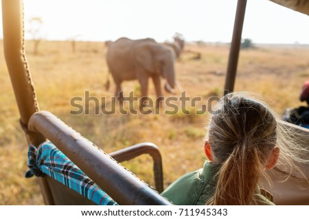 Adorable little girl in Kenya safari on morning game drive in open vehicle #711945343