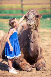 Adorable little girl with camels in the zoo on warm and sunny summer day.