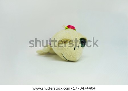 Adorable little turtle toy with one eye selected on white background.Concept of inclusion and humanity.