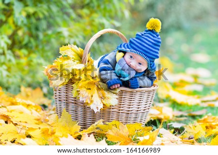 Adorable newborn baby in a basket between yellow maple leaves