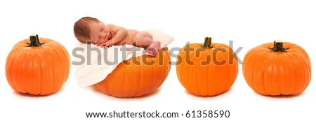 Adorable newborn baby laying on pumpkin in a row of pumpkins over white.