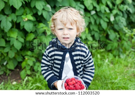 Adorable toddler boy with blond hairs with raspberries bucket in hands on organic berry farm