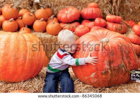 adorable toddler is hugging a huge pumpkin