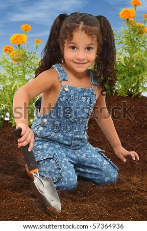 Adorable 3 year old mixed race girl working in a marigold garden.