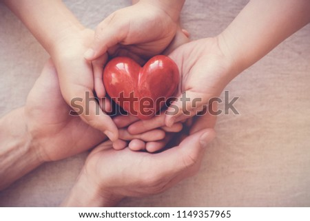 adult and child hands holding red heart, health care, love, organ donation, family insurance and CSR concept, world heart day, world health day