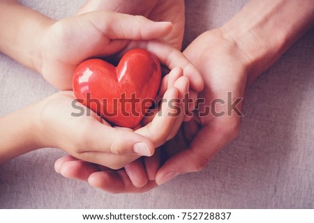 adult and child hands holding red heart, health care, love, organ donation, family insurance and CSR concept, world heart day
