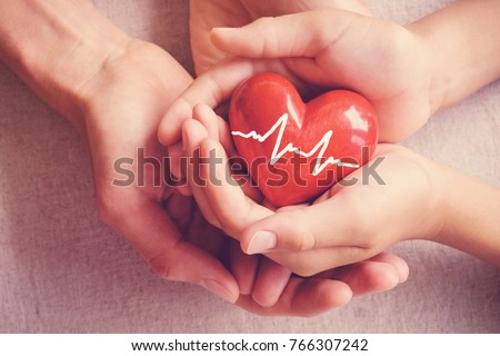 adult and child hands holding red heart, health care, organ donation, family insurance concept #766307242