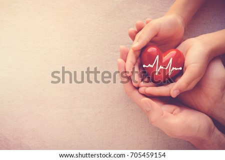 adult and child hands holding red heart with cardiogram, health care, love and family insurance concept, world heart day