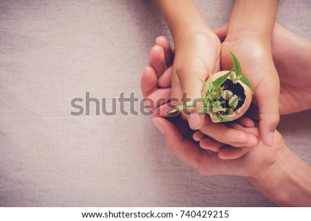 adult and child hands holding seedling plants in eggshells, eco gardening,  montessori education , CSR  Corporate social responsibility concept