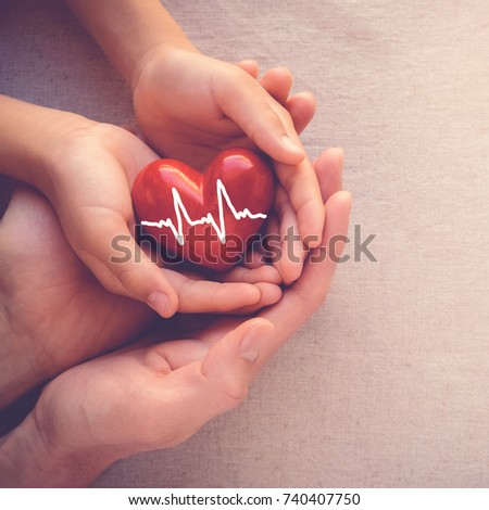 adult and child hands holiding red heart with cardiogram, health care love and family insurance concept