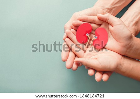 Adult and child holding kidney shaped paper on textured blue background, world kidney day, National Organ Donor Day, charity donation concept Сток-фото ©