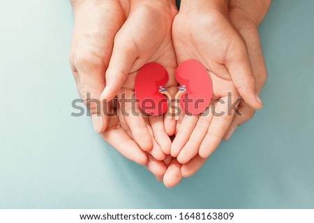 Adult and child holding kidney shaped paper, world kidney day, National Organ Donor Day, charity donation concept Сток-фото ©