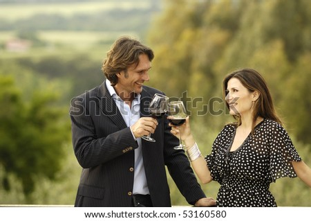 Adult couple toasting