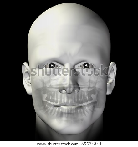 Adult man dental scan x-ray. 3d illustration.
