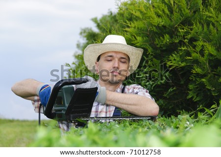 Adult man (gardener) in the blue overalls and straw hat cutting hedge with a electric hedge cutter