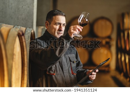 Adult man winemaker at winery checking glass looking quality while standing between the barrels in the cellar controlling wine making process - real people traditional and industry wine making concept Foto stock ©