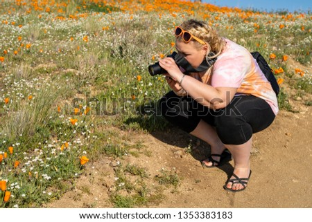 Adult woman takes photos with a camera at the Antelope Valley Poppy Reserve in California during the superbloom