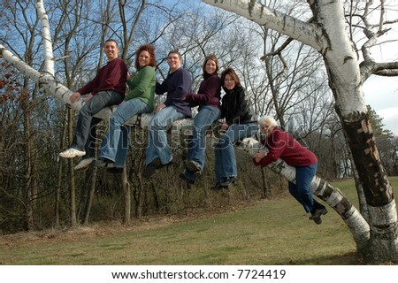 adults in  a birch tree with grandma hanging