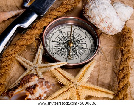 Adventure decoration with compass and shells on antique parchment.