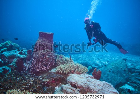 adventure underwater with the best diving spot at Losin south of Thailand  #1205732971