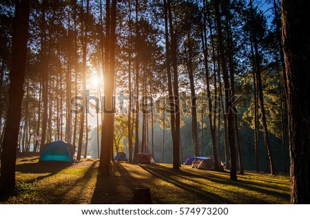 Adventures Camping tourism and tent under the view pine forest landscape near water outdoor  in morning and sunset sky at Pang-ung, pine forest park , Mae Hong Son,  Thailand. Concept Travel