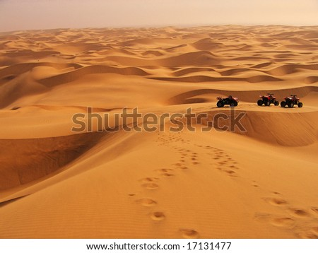 Adventures in the Namibian Sand Dunes