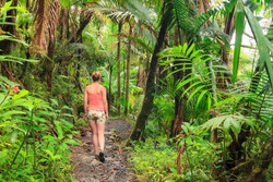 Adventurous and stunning young woman hiking in the beautiful jungle of the El Yunque national forest in Puerto Rico