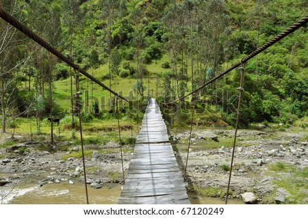 adventurous suspension rope bridge in the rain forest