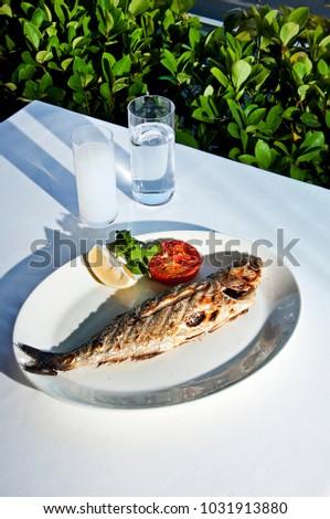 Aegean Bluefish plate and Turkish raki aka Greek Uzo in the garden table Stok fotoğraf ©