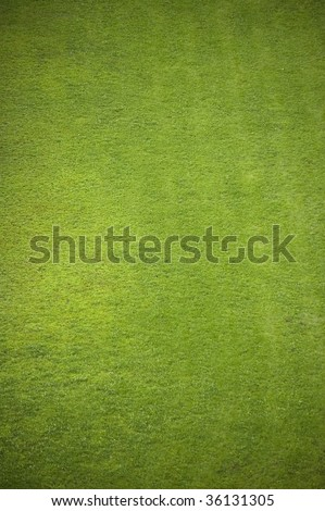 aeral of soccer (football) grass field  / natural background