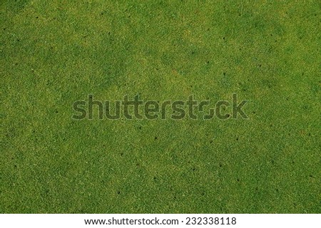 Aerated grass lawn, putting green on golf course - gardening maintenance background.