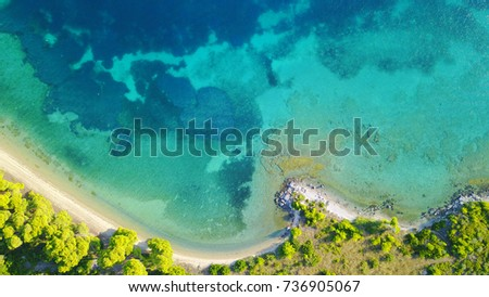 Aerial bird's eye view photo taken by drone of tropical seascape and sandy beach with turquoise clear waters and pine trees #736905067