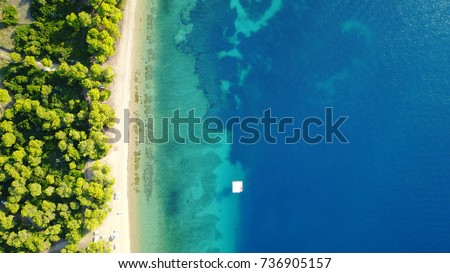 Aerial bird's eye view photo taken by drone of tropical seascape and sandy beach with turquoise clear waters and pine trees