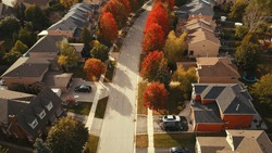 Aerial drone image of suburbia during autumn with brilliant colors showing.