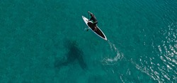 Aerial drone photo of fit man practising Stand Up Paddle or SUP in tropical exotic bay with emerald sea
