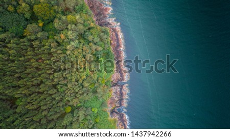 Aerial drone shot of the eastern coastline of Scotland, green pine tree forest on the left and rocky coastline with clear turquoise water on the right taken from above, wide birds eye view landscape