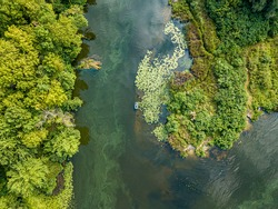 Aerial drone view. Fishing boat on green water near the shore. Algae bloom in the river, green pattern on the water.
