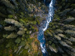 Aerial drone view looking down at a pristine blue mountain river running through the tall trees of the forest